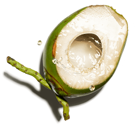 coconut water*