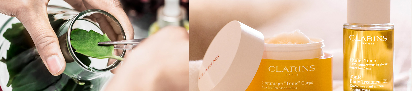 Person selecting a leaf / Clarins Tonic Body Polisher and Treatment Oil